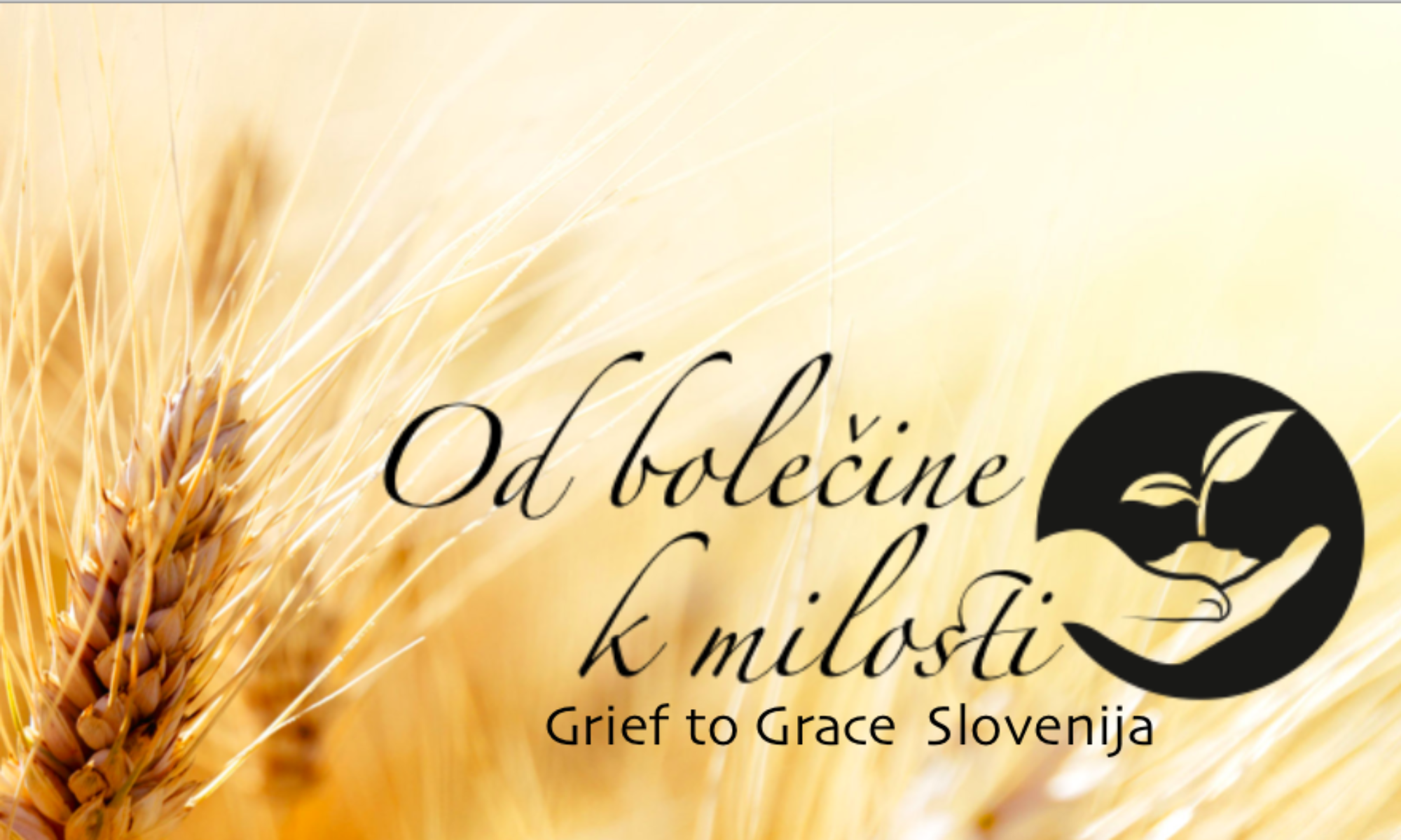 Od bolečine k milosti